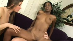 Hot red bone babe joins a white couple for a hardcore threesome