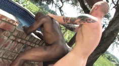 Ripped Black Stud Gets Into An Interracial Fuck Fest With A Hot Guy