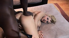 Buxom blonde Starla Sterling surrenders her juicy cunt to a black cock