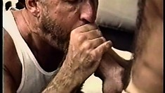 Paul Carrigan puts his cock-sucking lips and tight ass to work