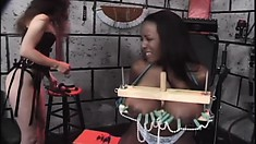 Black amateur with huge tits gets them tied up and is tortured in female bondage