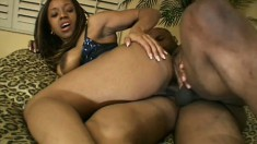 A feisty black diva gets her sweet asshole dicked and begs for more