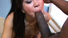 Lusty Asian babe spreads her legs to get some rough pussy slamming