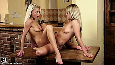 Lesbian babes use their kitchen table to scissor with each other